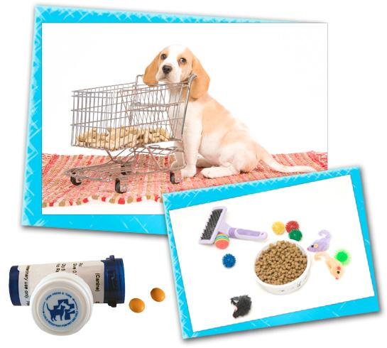 pet supply pick up and delivery daytime dogs and friends
